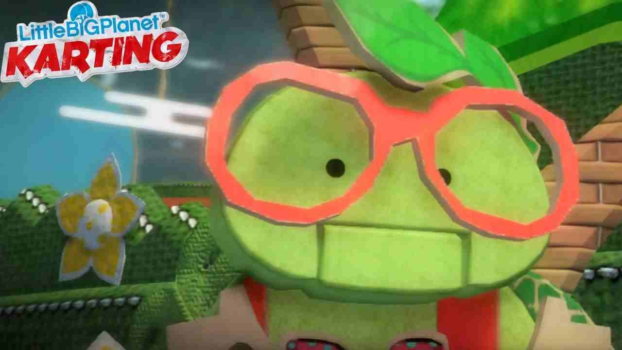 Ray The Wonder Turtle