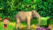 Leo with medium sized elephants