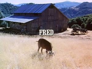 Episode 308: Fred
