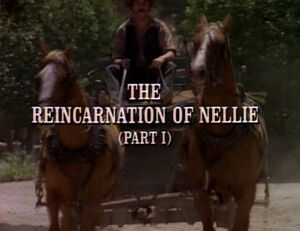 Title.reincarnationofnellie1.jpg