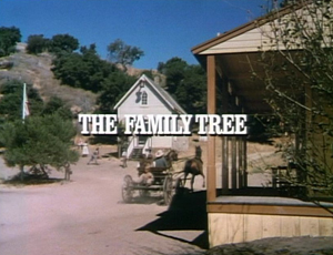 Episode 603: The Family Tree