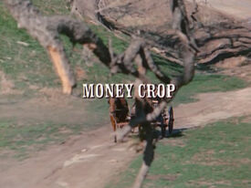 Title.moneycrop.jpg