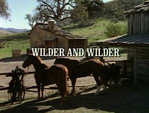 Title.wilderandwilder.jpg
