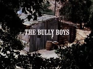 Title.bullyboys.jpg