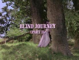 Title.blindjourney2.jpg