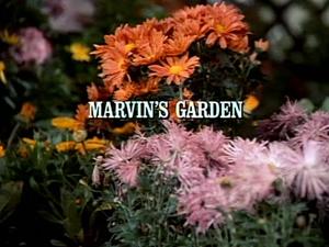 Episode 912: Marvin's Garden