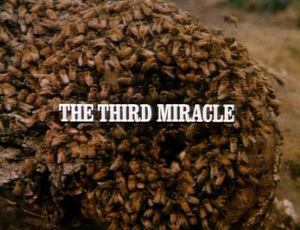 Title.thethirdmiracle.jpg