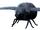 Giant arthropods