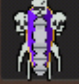 Boneshield T3.png
