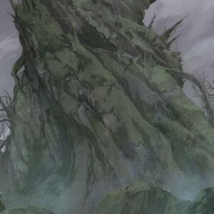 Base of the Wagandea tree.jpg