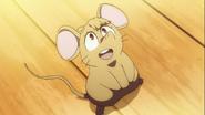 MouseAkko