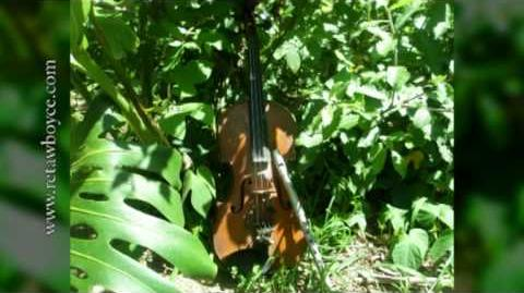 Celtic Violin - Down by the Sally Gardens - Strings, Harp and Tin Whistle-0