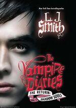 Vampire-diaries-return-shadow-souls