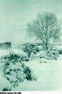 Nevada a Llofriu any 1985