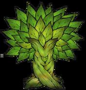 Parasite Tree crop