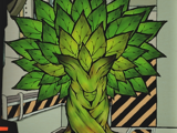 D-04-108 寄生树