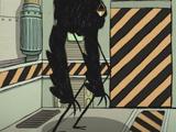 Judgement Bird