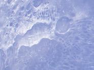 MoonCloseUp2