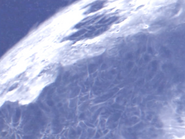 MoonCloseUp1