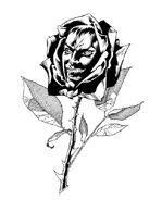 Dodge Black Rose 1