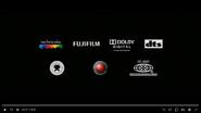 Skyline MPAA Card