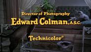 Technicolor - 1965 - That Darn Cat!