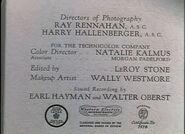Louisiana Purchase - 1941 - MPAA
