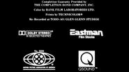 Robin Hood Prince of Thieves MPAA Credits
