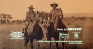 The Culpepper Cattle Co. - 1972 - MPAA