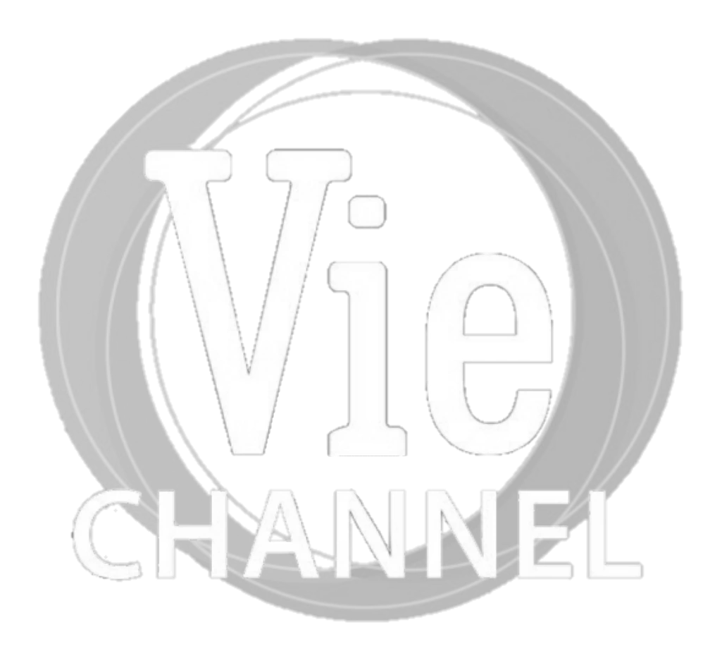 Vie Channel (HTV2)(2018-present).png