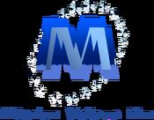 Millenium Visitama Film 2000.png