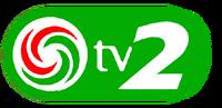 TV2 (Hungary) (1999) alternate