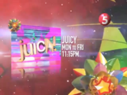 TV5Christmas2011bumper