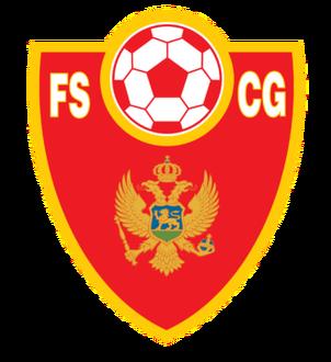 FSCG.png
