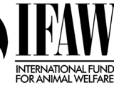 International Fund for Animal Welfare