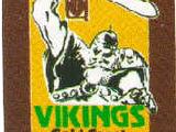 Gold Coast Vikings