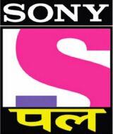 Sony Pal.jpg
