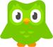 Duolingo Owl 2018