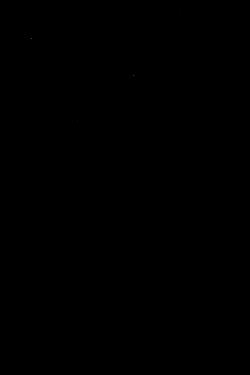 Furla Monogram.png