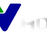 Vietnam Television