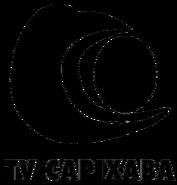 TV Capixaba 2000 wordmark 2d