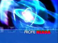 PROFIL NIAGA