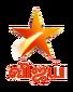 Star Vijay 2017.png