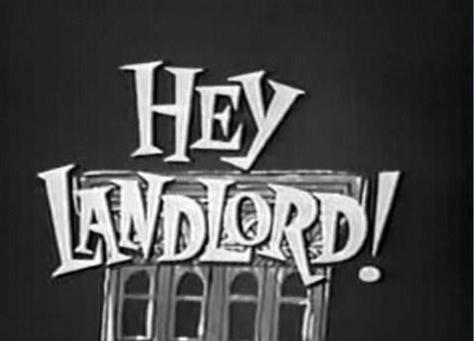 Hey, Landlord!