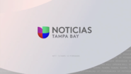 Wvea noticias univision tampa bay white package 2019