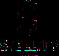 StellifyMedia.png