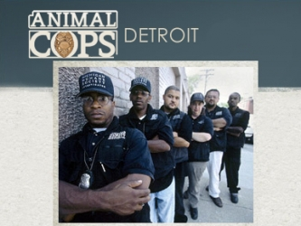 Animal cops detroit-show.jpg