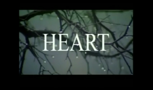 Heart 2006.png