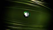 PBS Promo (Green) 2015