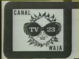 WLTV-DT